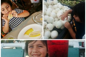 Tips to get your kids to be Adventurous eaters