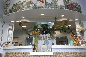 The jungle themed entrance to Stone Oak Pediatric Dentistry.
