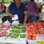 A Field Trip to San Antonio Farmers' Markets