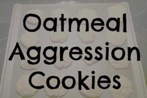 oatmeal aggression cookies