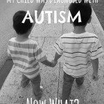 My Child Was Diagnosed With Autism.  Now What?