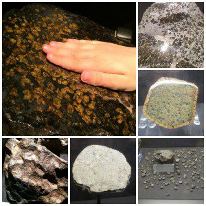Touch the meteorites at Alien Worlds and Androids at the Witte Museum | Alamo City Moms Blog