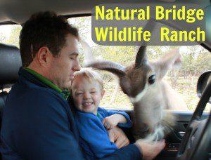 Wildlife Ranch.jpg