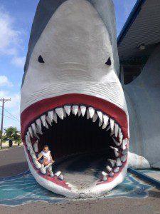 "The quintessential Port Aransas ""shark mouth"" picture"