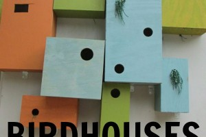 Birdhouses at the San Antonio Botanical Garden | Alamo City Moms Blog