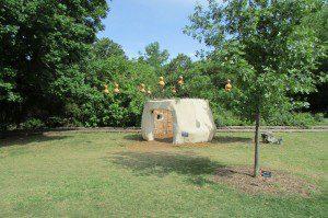 Baobab Family Bird House, San Antonio Botanical Garden