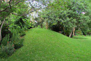ChrisPark - tumble hill |Alamo City Moms Blog