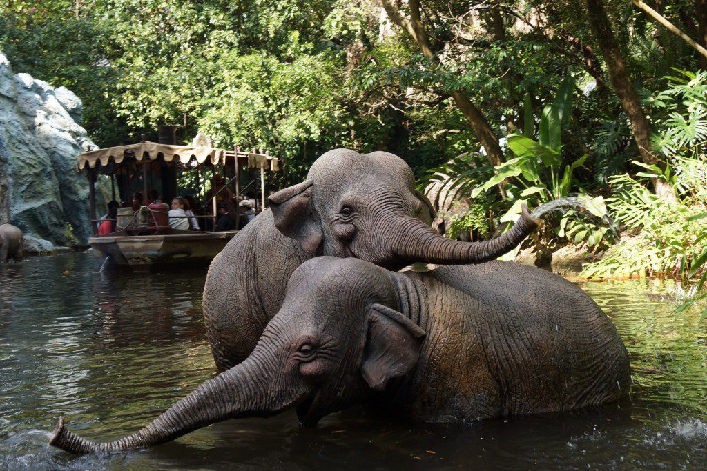 Don't miss the classic Jungle Cruise!