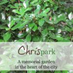 CHRISpark: a memorial, a celebration