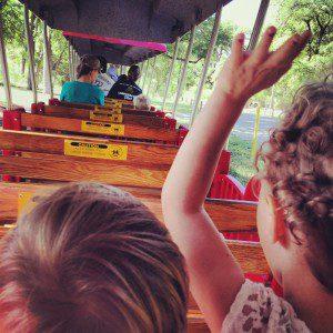 Riding the Zoo Train