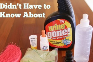 Necessary Products I Wish I Didn't Have to Know About
