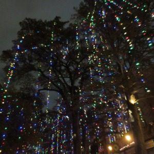 Holiday lights at the San Antonio Riverwalk | Alamo City Moms Blog