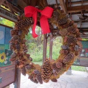 Holidays in Bloom at the San Antonio Botanical Garden | Alamo City Moms Blog
