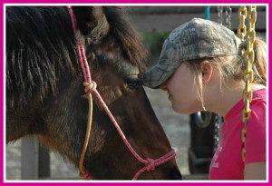 homeschooling, horses