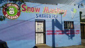 snow monkey side