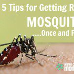 Five Tips for Getting Rid of Mosquitoes…Once and for All!