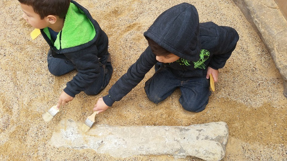 We loved the Fort Worth Museum's Dino Dig!