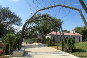Promenade at Yanaguana Garden in Hemisfair | Alamo City Moms Blog