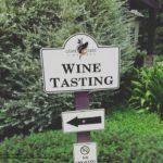 Grape Creek Vineyard: A Great Day Trip Near San Antonio