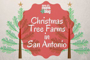 Christmas Tree Farms in San Antonio