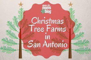 Christmas Tree Farms in San Antonio