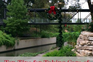 Ten Tips for Taking Care of Yourself During the Holidays | Alamo City Moms Blog