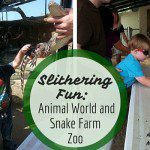 Slithering Fun: Animal World and Snake Farm Zoo
