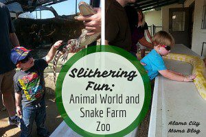 Animal World and Snake Farm Zoo