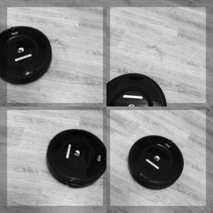 Roomba: A Study in Black and White photo credit: Big Sister This collage highlights only four of the twenty-eight individual photographs comprising the study