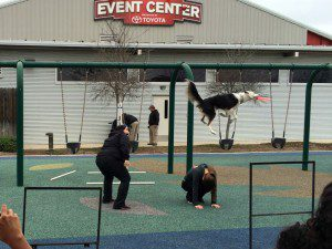 Morgan's Wonderland Spring Break Andrea's Flying Canines by Andrea Guajardo | Alamo City Moms Blog