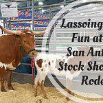 Lassoing Some Fun at the San Antonio Stock Show and Rodeo