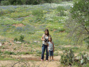 Willow City Loop scenic drive wildflowers near Fredericksburg, Texas | Alamo City Moms Blog