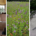 Hit the Trail!: Parks, Natural Areas, and Green Spaces in San Antonio