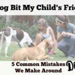 A Dog Bit My Child's Friend: Five Common Mistakes We Make Around Dogs