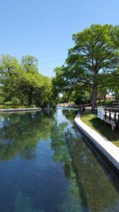 A gorgeous river view in Landa Park.