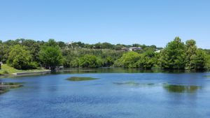 A view of the Comal River running alongside Landa Park.