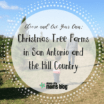 Choose and Cut Your Own: Christmas Tree Farms in San Antonio and the Hill Country