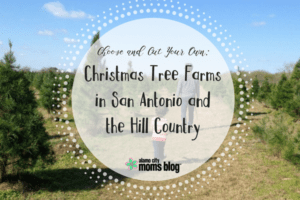 christmas-tree-farms-in-san-antonio-and-the-hill-country-1