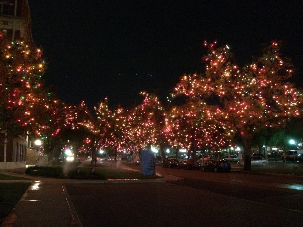 Light The Way At University Of The Incarnate Word