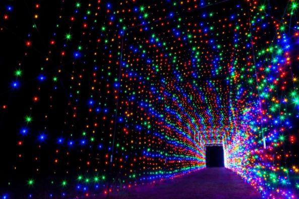 lights in san antonio