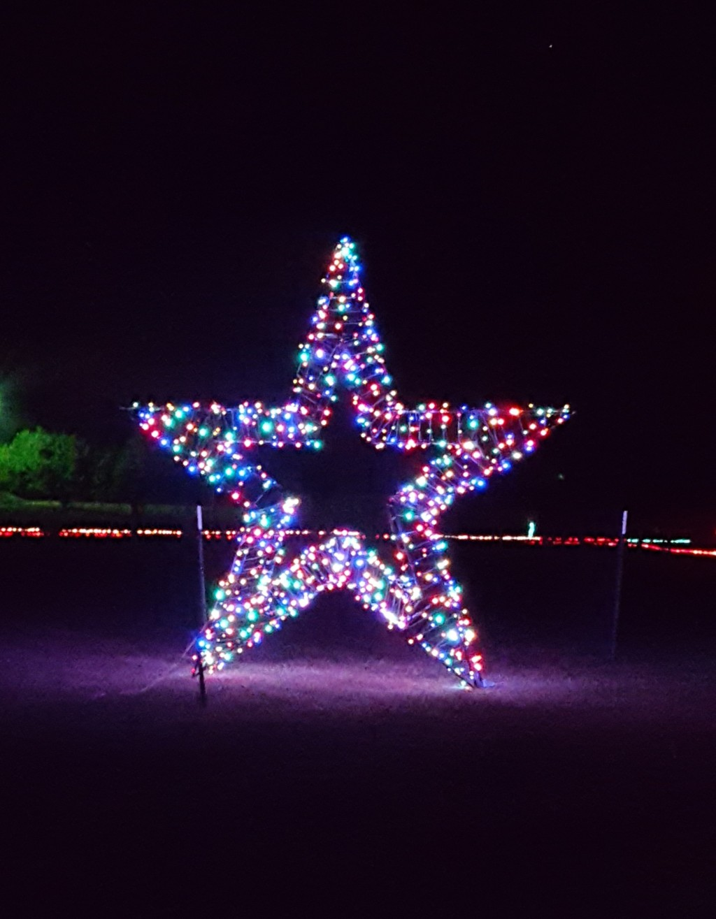 star-at-christmas-light-fest-close-up