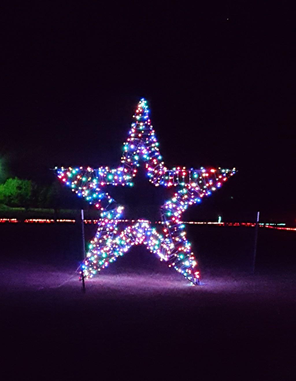 star-at-christmas-light-fest-close-up