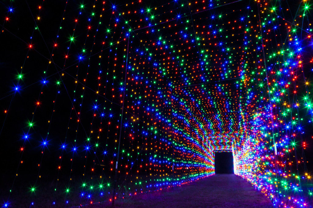 tunnel-of-lights-at-christmas-light-fest
