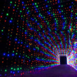 Experience the Magic of the Holidays in True Texas Style: Get in the Glow at Christmas Light Fest