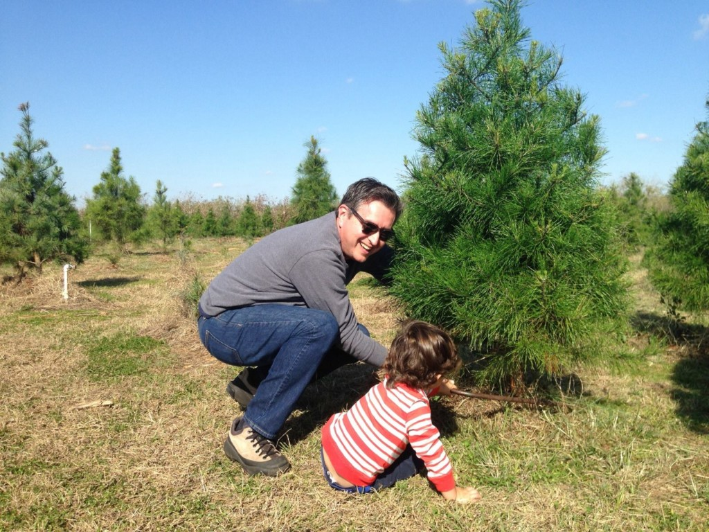 last year my family drove out to seguin and picked a tree from seilers christmas tree farm my son actually did the picking with some guidance from mom - Cut Your Own Christmas Tree Farm