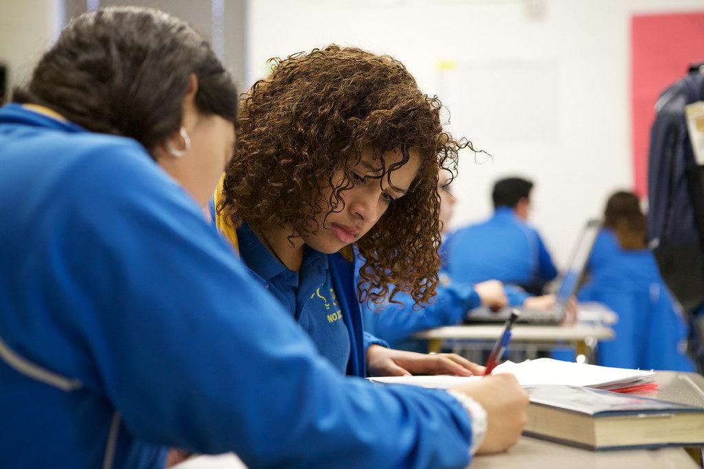 IDEA Public Schools AP picture