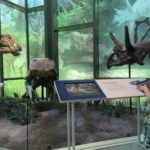 The Witte Museum from A Kid's Eye View
