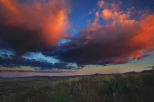 tanner-quigg-landscape