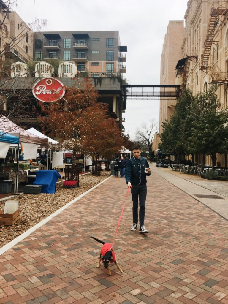 dog-friendly-places-in-san-antonio-pearl
