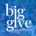 Moms Support Local Nonprofits for the Big Give San Antonio